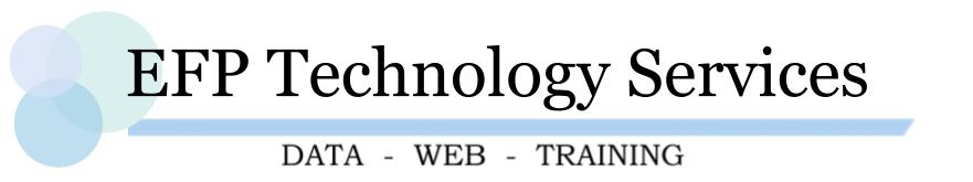 EFP Technology Services, LLC, Logo - Your web, data, and training solution.